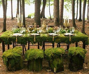 Trouwen in het bos.....zooooo gaaf!!