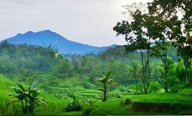 Lawu mountain