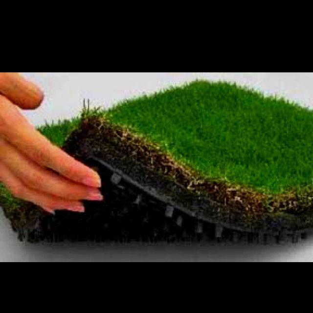For roof top garden