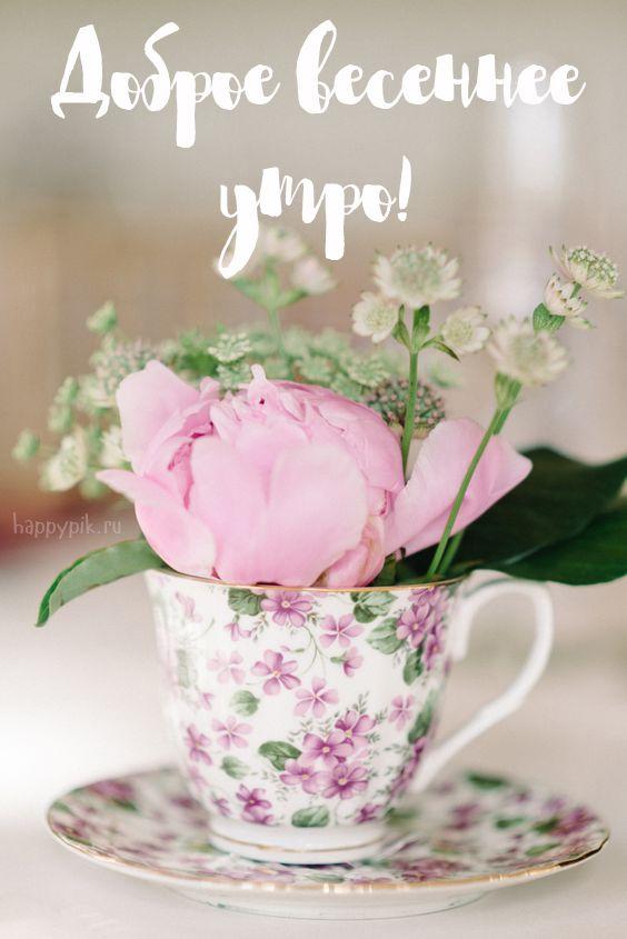 Радости душе, картинки весенние с цветами с добрым утром