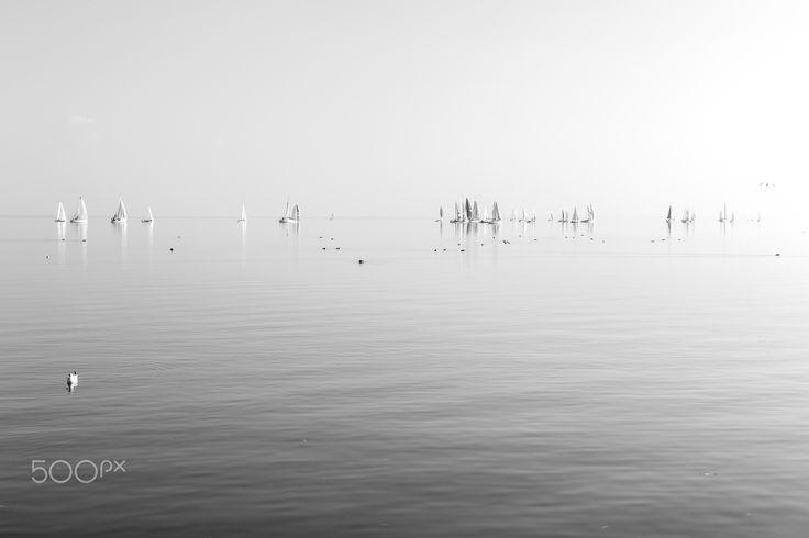 white sails - null