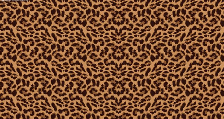 Cheetah Background Twitter   Hawaii Dermatology