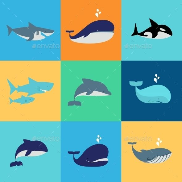 Vector Set Of Whale, Dolphin And Shark Icons - Animals Characters