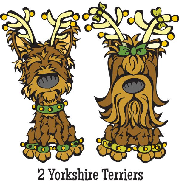 280 best images about Yorkie cartoon on Pinterest | Fine ...