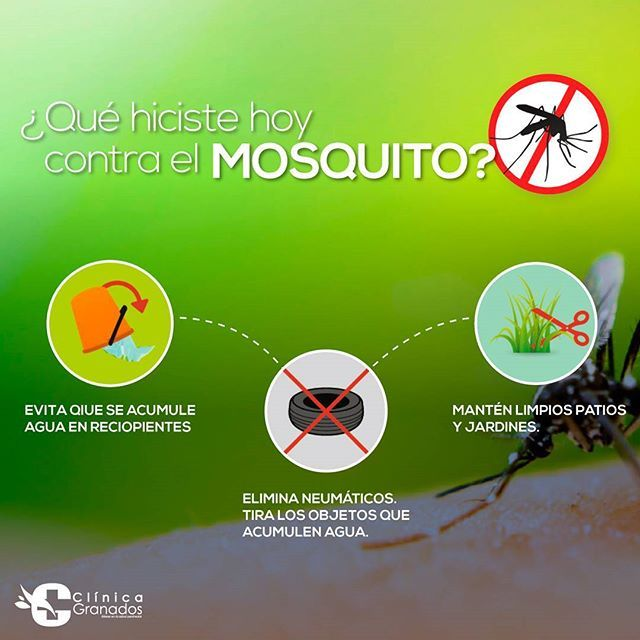 Por muchos motivos, los mosquitos son los animales más peligrosos del planeta. De acuerdo a las estimaciones más prudentes, los mosquitos son los responsables de millones de casos de malaria cada año. Sin embargo, los mosquitos también portan otras enfermedades, tales como el virus del Nilo occidental, la fiebre amarilla y el dengue. Existen muchas razones para tomar todas las medidas posibles para evitar las picaduras de mosquito. Te mencionamos algunas.  #CLinicagranados #hospitalGRanados…
