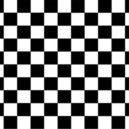Pack Of 6 Black And White Checkered Racing Themed Photo Backdrop Party Decorations 30
