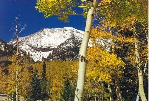 What To See And Do In Flagstaff, Arizona