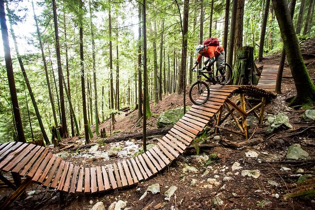 Roller Coaster boards - Biking. Find local biking trails at [EducatorHub.com]