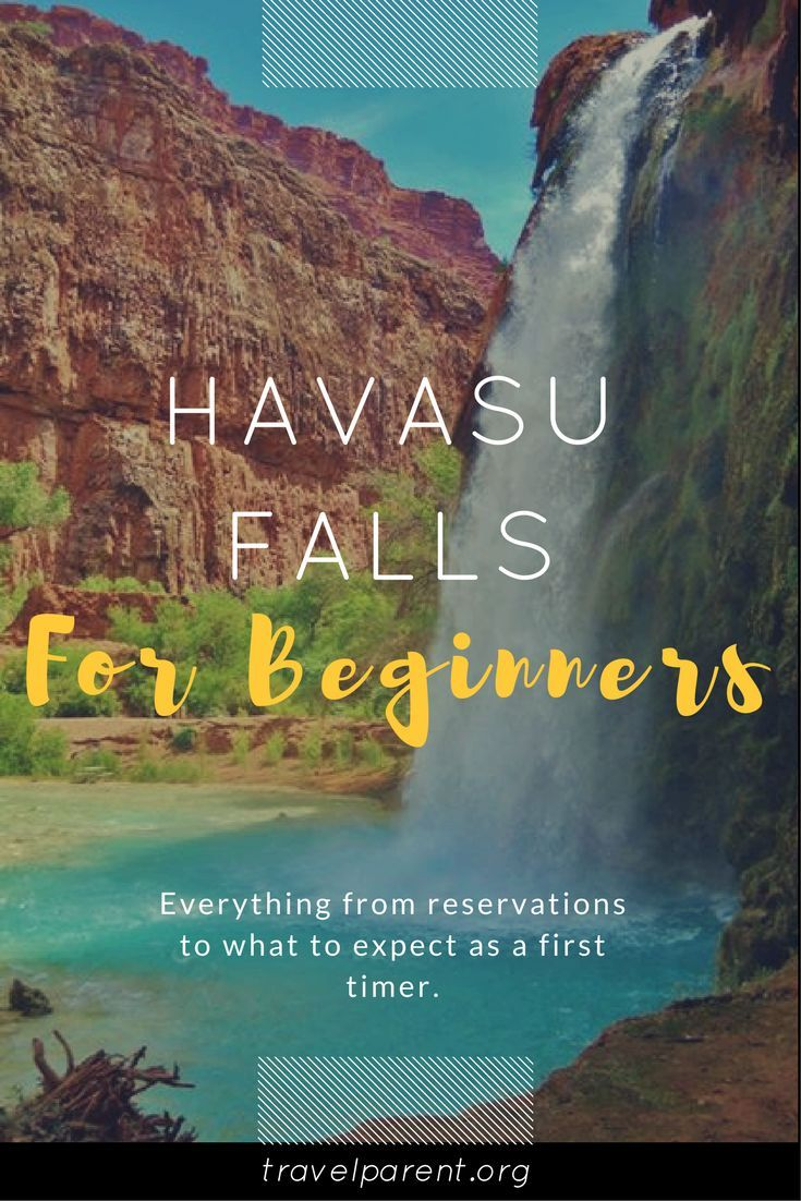 Havasu Falls For Beginners!