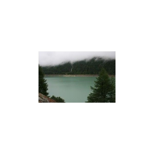 stock.xchng - lake (stock photo by julius70) ❤ liked on Polyvore featuring pictures, backgrounds, photos, pics, pictures - green and wallpaper