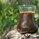 Aceite de neem o nim, propiedades y usos medicinales ecoagricultor.com