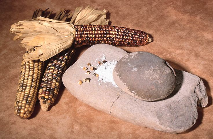 Cherokee Indian Tribe | the cherokees indians were farming people cherokee women harvested ...