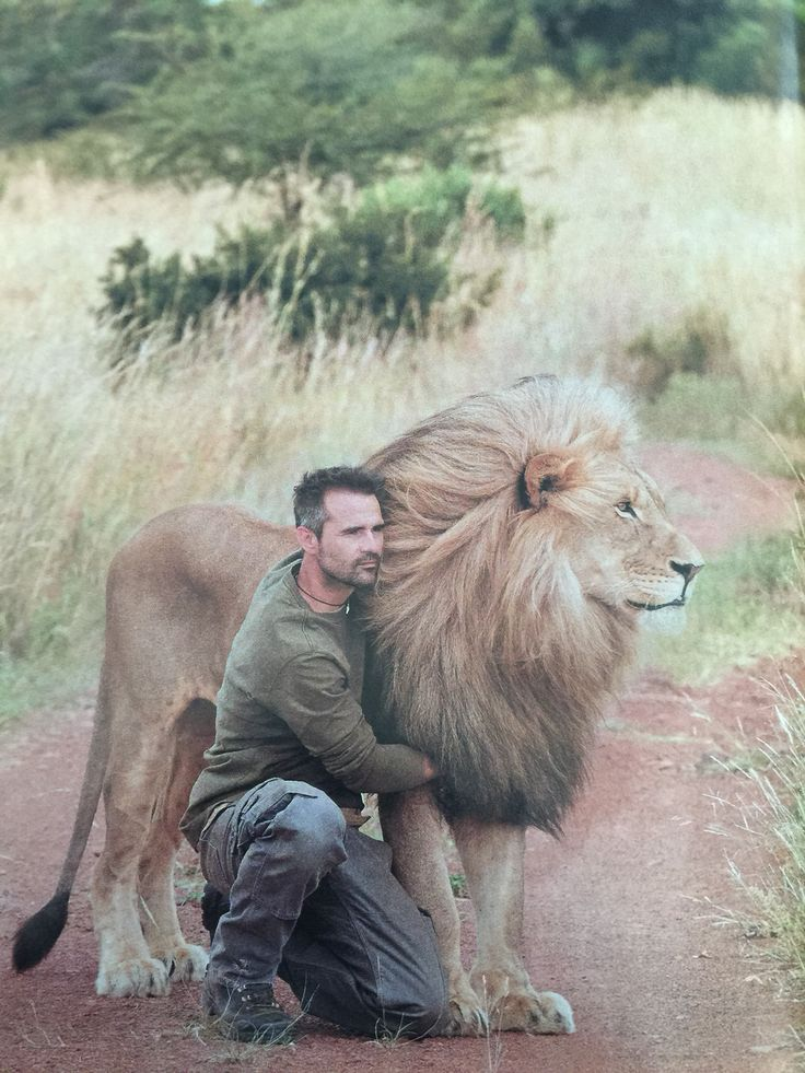 Magnificent Kevin Richardson Love and trust among human and animal