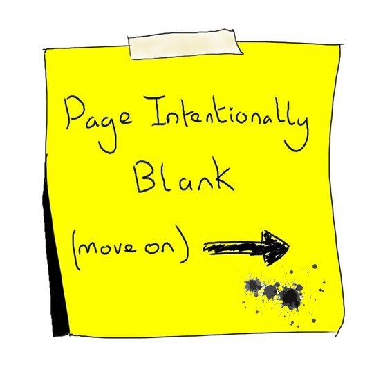 Page Intentionally Blank (IT Assurance page from the book)