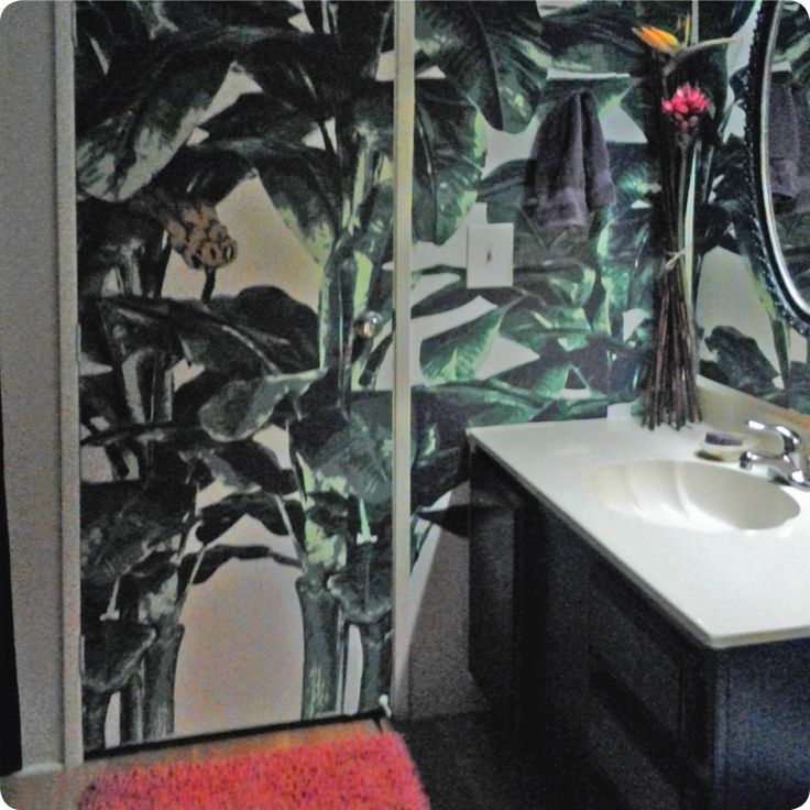 Cindy Tuzzolino_Tropical Wallpaper in Hollywood_Sept. 2015 ROTM Entry