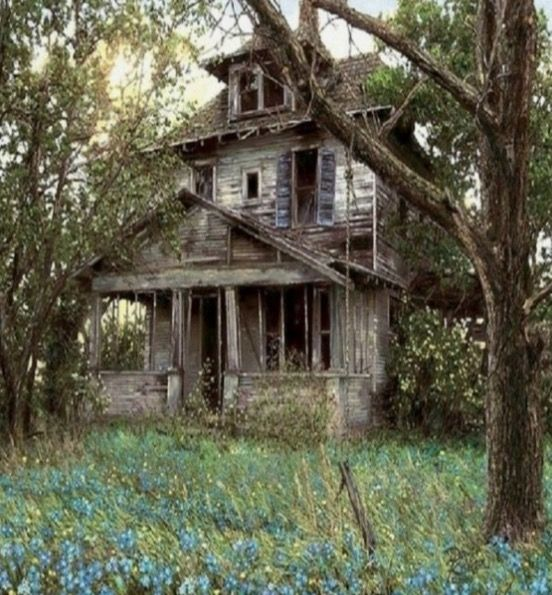 """CHILDREN GROWN AND GONE......PARENTS SENT TO """"REST HOMES""""--- UNTIL THEIR PASSING........WHO WANTED THIS OLD HOUSE???......NOBODY....ccp"""