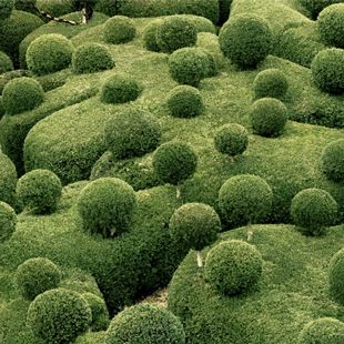 17 best images about carpet bedding on pinterest gardens for Marqueyssac topiary gardens philippe jarrigeon