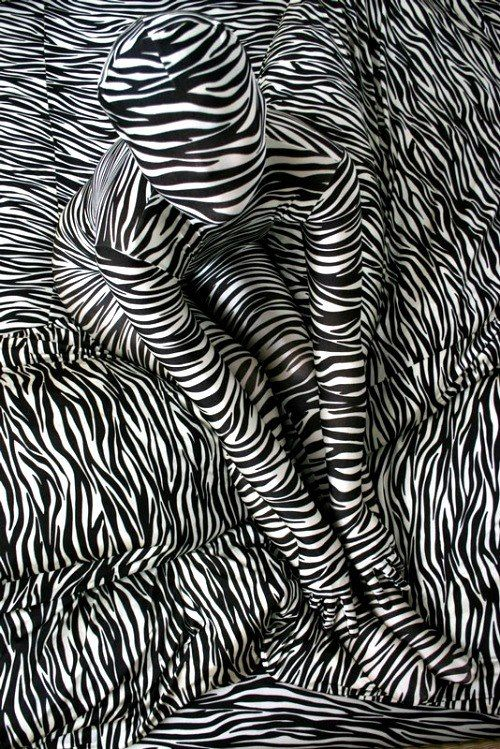 Line Art Illusion : There s a zebra hiding in that person galore