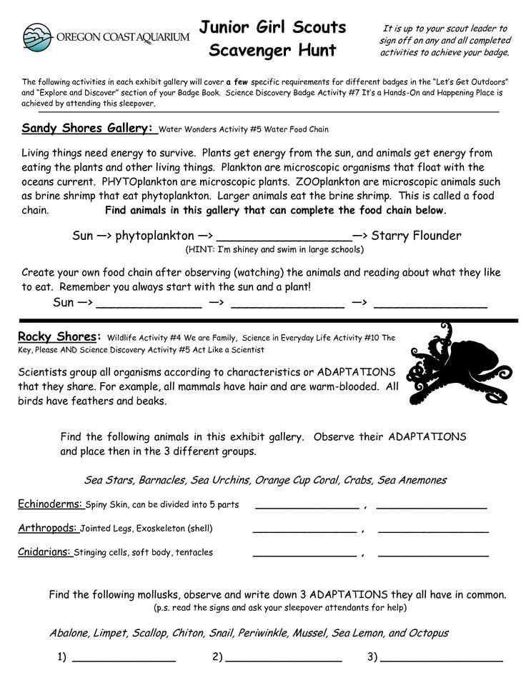 Junior Girl Scout Badge Worksheets | Junior Girl Scouts Scavenger Hunt