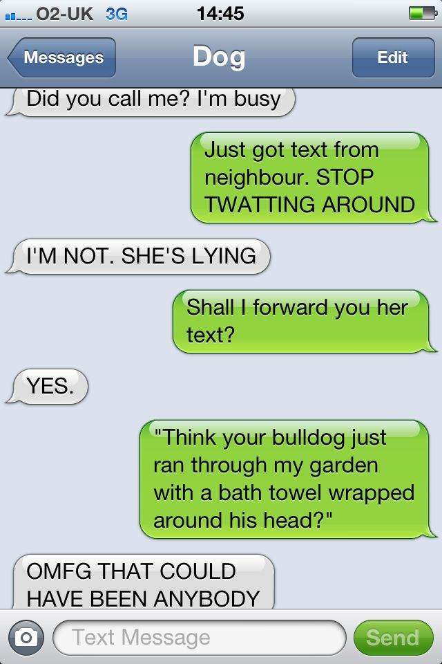Best Texts From Dog Images On Pinterest Funny Text Messages - 10 hilarious conversations dogs have dial 911