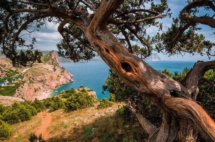 Балаклава - гора Мотыль - хребет Кая-Баш,Крым