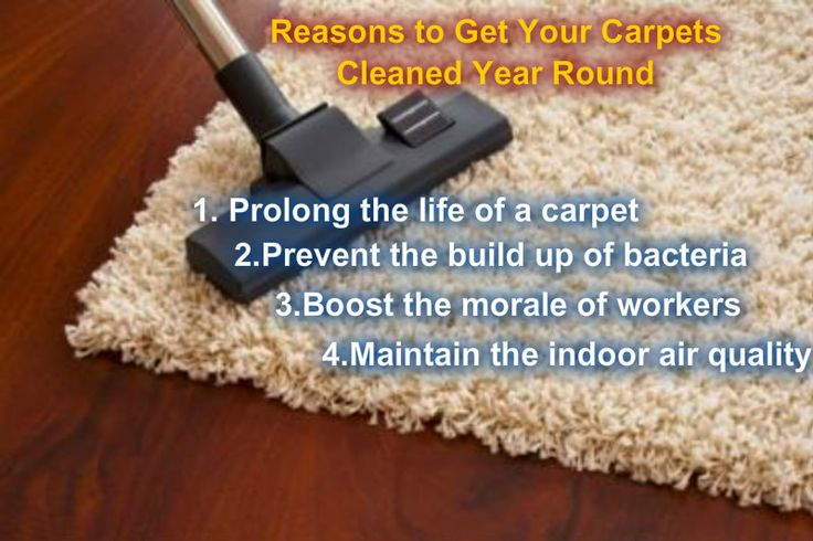 Most of the companies in New South Wales are hiring carpet cleaning services as part of their autumn cleaning routine.However, not only in autumn or spring should the companies hire the services of commercial carpet cleaners, they should use the cleaning services year round to keep their carpets in a spic-and-span condition.