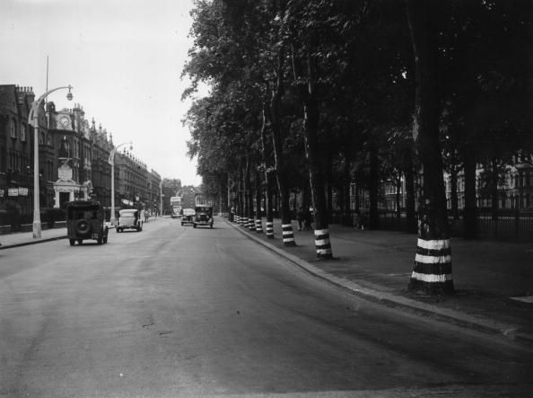 9th August 1939: A line of trees along the New Kings Road in Parsons Green, Fulham, London, painted with three white rings in preparation for Britain's biggest World War II blackout, due to start at 11.30 pm. (Photo by J. A. Hampton/Topical Press Agency/Getty Images) #london #war #East_End