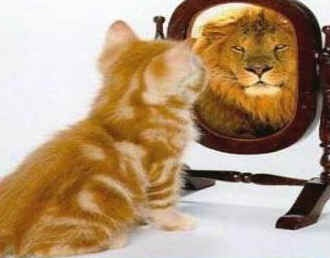 Believe in YourselfMirrors, Lion, Cat, Self Image, Inspiration, Quotes, Self Confidence, What Matter Most, Self Esteem