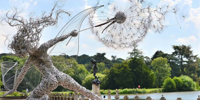 These Wire Fairy Sculptures Will Absolutely Blow Your Mind