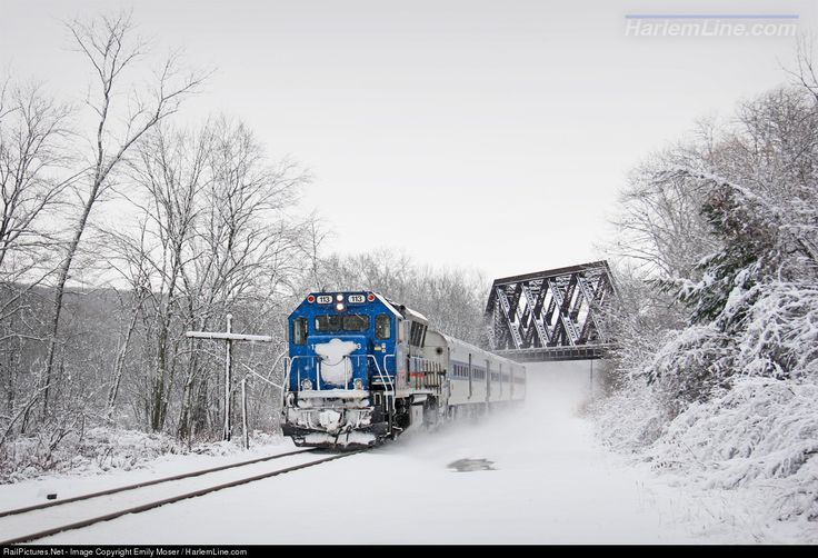 RailPictures.Net Photo: MNCR 113 Metro-North Railroad Brookville BL20GH at Patterson, New York by Emily Moser / HarlemLine.com