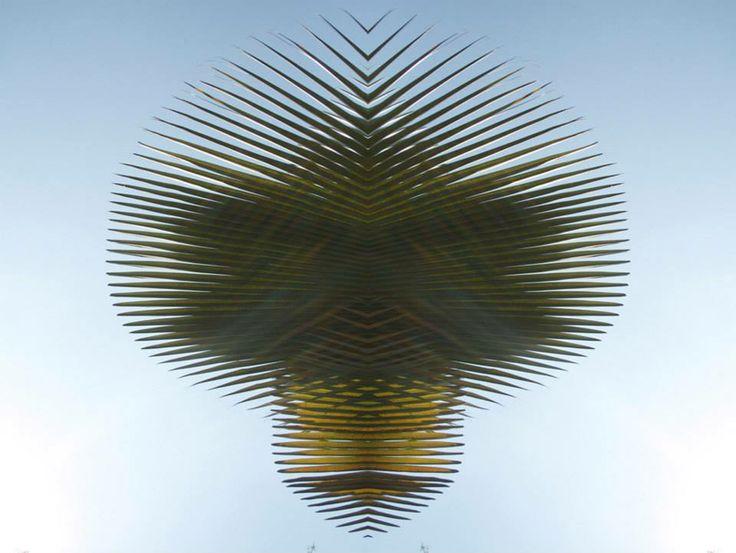Miami-based  artist Yuri Tuma 01