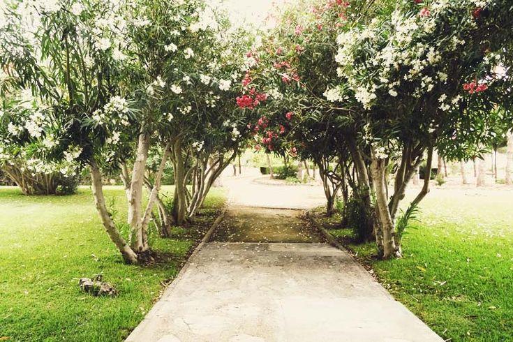 meditation and yoga retreat in spain 2 garden