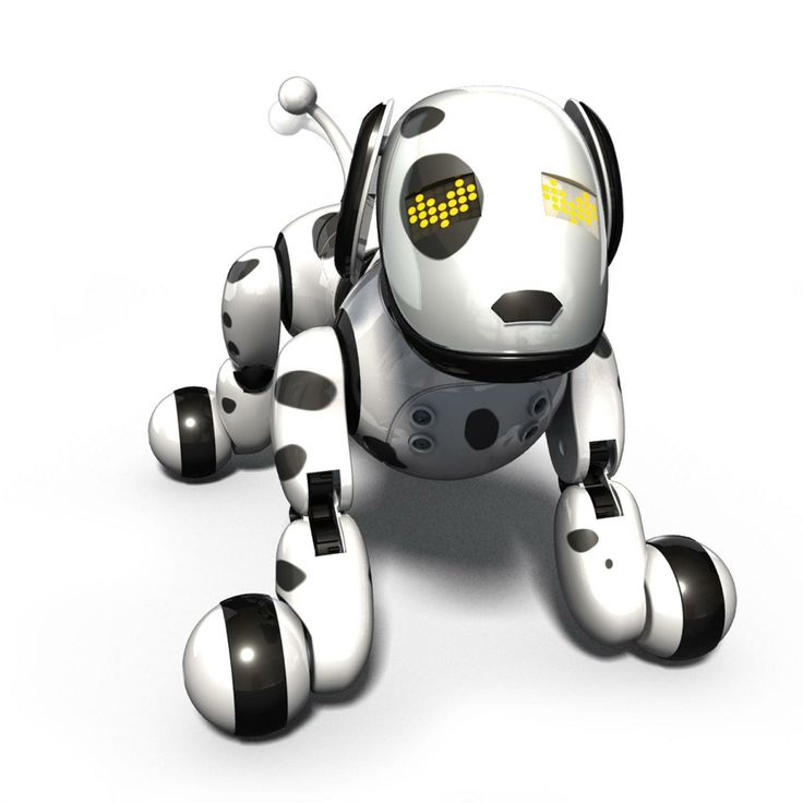 Zoomer the Robotic Dog.  Go to you tube an watch this little dog in action.  This is a great gift for kids or anyone. This is one of the hottest toys this year.