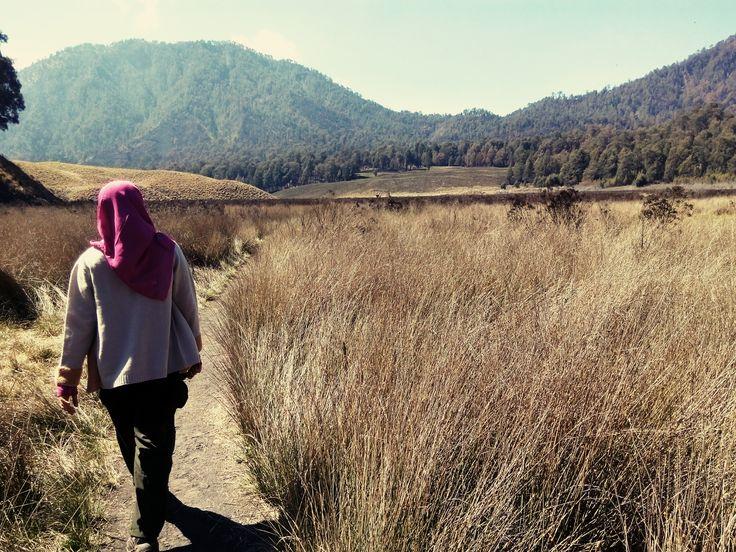 November 2014 || Oro-Oro Ombo, Indonesia