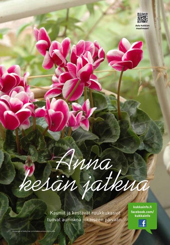 kukkainfo.fi -> Anna kesän jatkua 2012