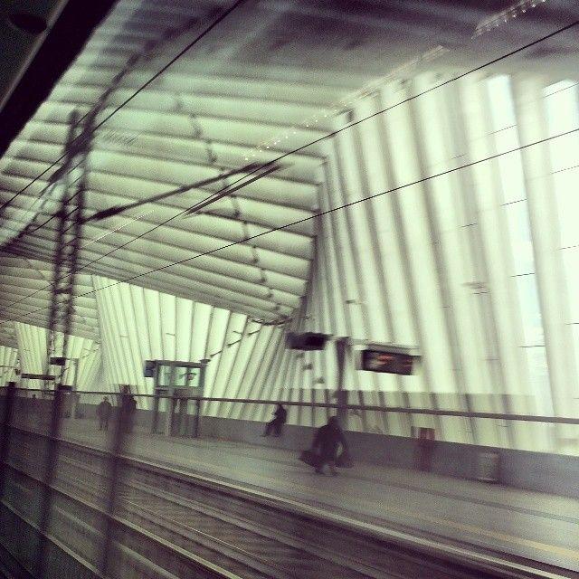 #imapassenger#passenger#station#padana#architecture#archilovers#building#arquitectura#rail#railway#train#run#fast#instapeople#people#perspective#trip#instalovers#instacool#instagood