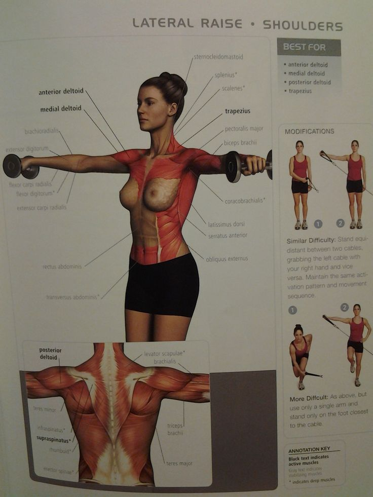 SHOULDERS: lateral raise (ant/medial/post deltoid, trapezius) ? reps