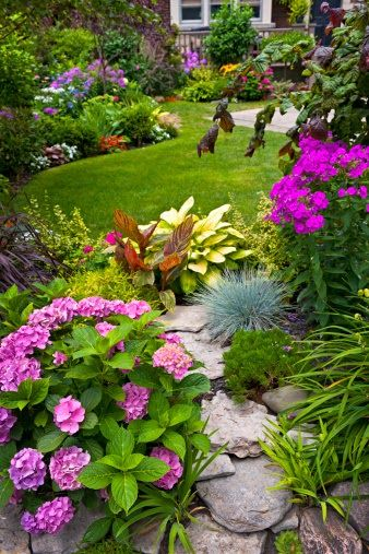 Beautiful flower inspiration for my garden. Photo only, not a link.