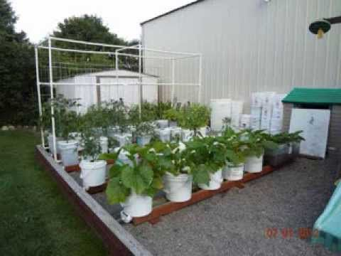 Container Vegetable Gardening Ideas image of container vegetable garden ideas in pots 534 Best Container Vegetable Gardening Images On Pinterest