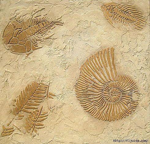 2Fossils_3 (490x470, 256Kb)