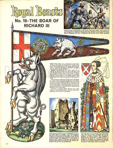 Royal Beasts: The Boar of Richard III.                                                                                                                                                     More