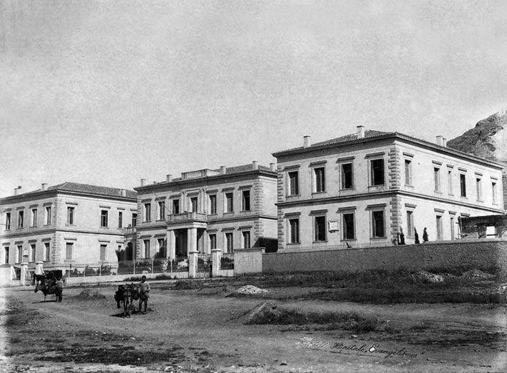 1902. ~  Γαϊδουράκια μπροστά από το Νοσοκομείο Ευαγγελισμός.