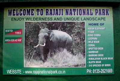 Uttarakhand posts: Rajaji National Park