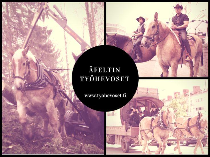 Åfeltin Työhevoset www.tyohevoset.fi Professional horse logging Horse drawn forestcart manufacturer