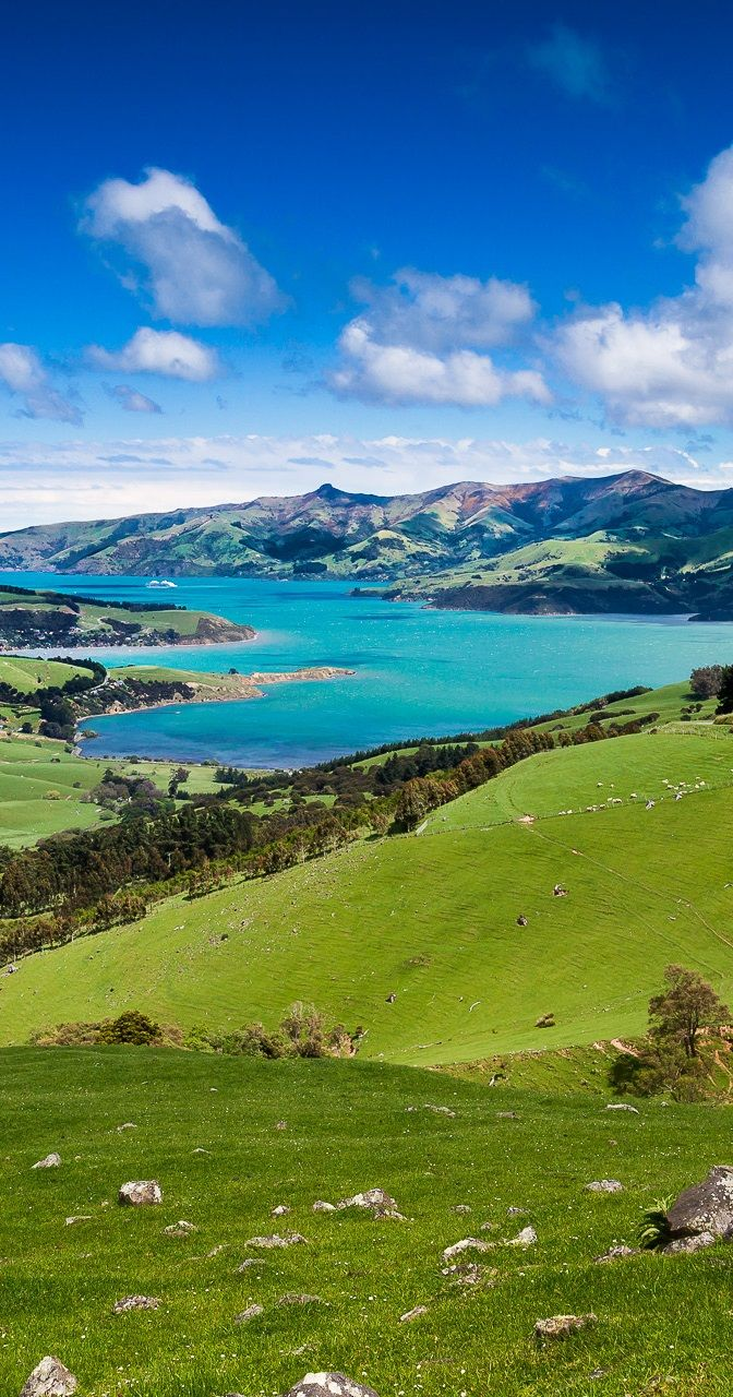 Akaroa Harbour, Banks Peninsula, New Zealand