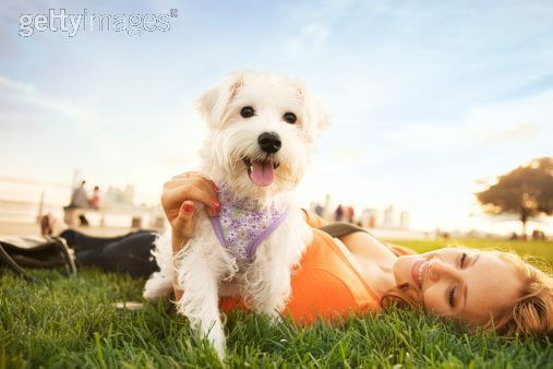 Google Image Result for http://www.photographytips.com.au/images/dog-owner-park-family-pets-photography1.jpg