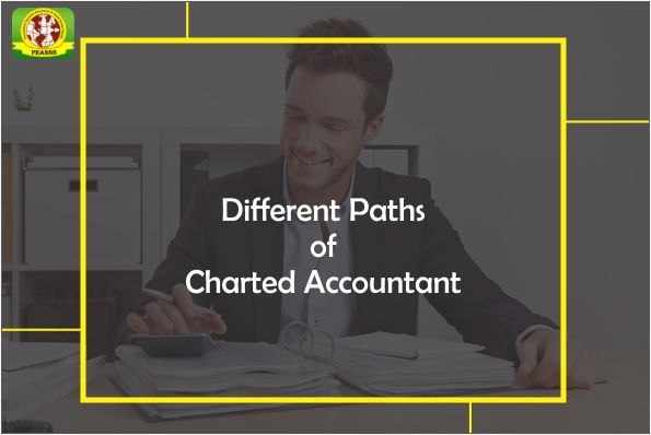 There are a number of different paths you can take under the heading of Chartered Accountancy. Some of these include Chartered Accountant (Audit), Chartered Certified Accountant, Chartered Management Accountant, Chartered Public and Finance Accountant. #charteredAccountant #ipsr #career