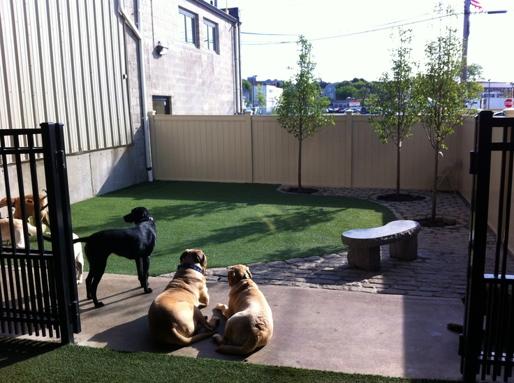 Really Nice Space With Turf, Patio Stones, Trees, Bench, And Nice Fencing