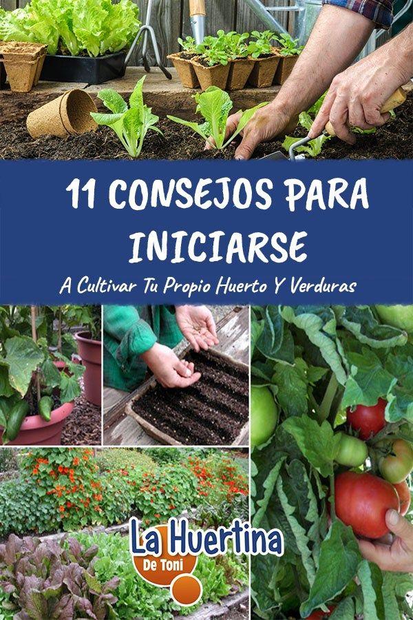 11 Consejos Para Comenzar A Cultivar En El Huerto. Consejos útiles para princip…