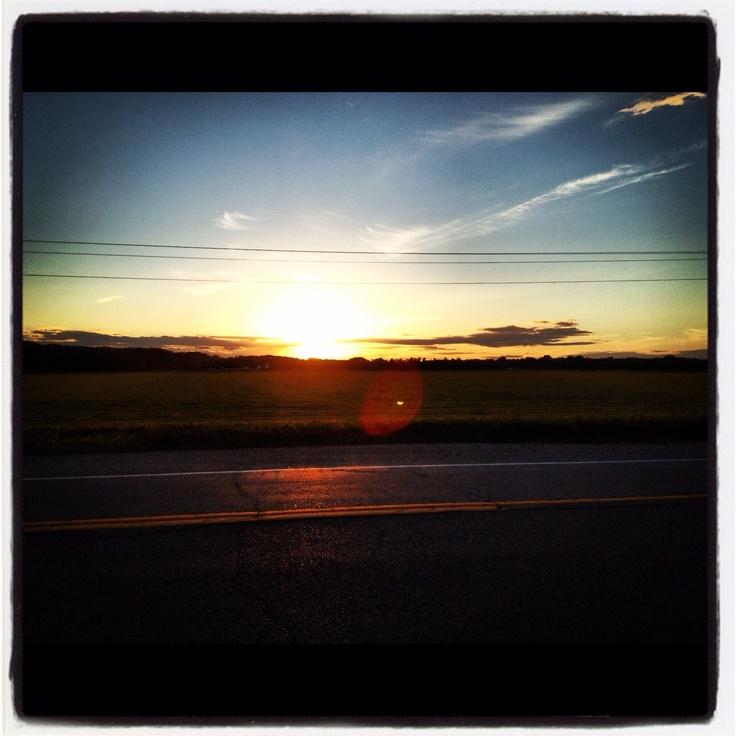 """Field on the edge of the """"mountain"""" - prairie mountain that is! #GILOVEMANITOBA"""